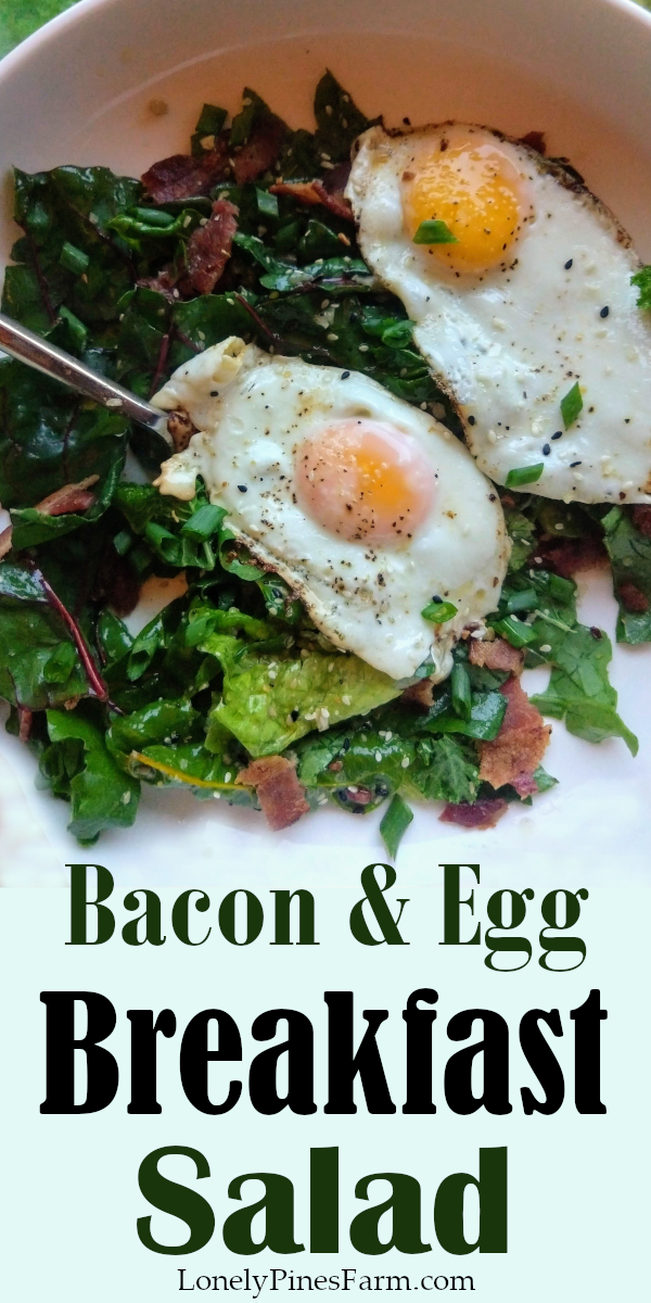 Salad for breakfast seems a little kooky, but I can't stop raving about it! This light, yet filling breakfast dish will become a favorite in no time. Perfect for a quick morning meal! The homemade lemon vinaigrette brightens the flavor and, all things considered, it's pretty darn healthy. Give it a try & you won't be disappointed!