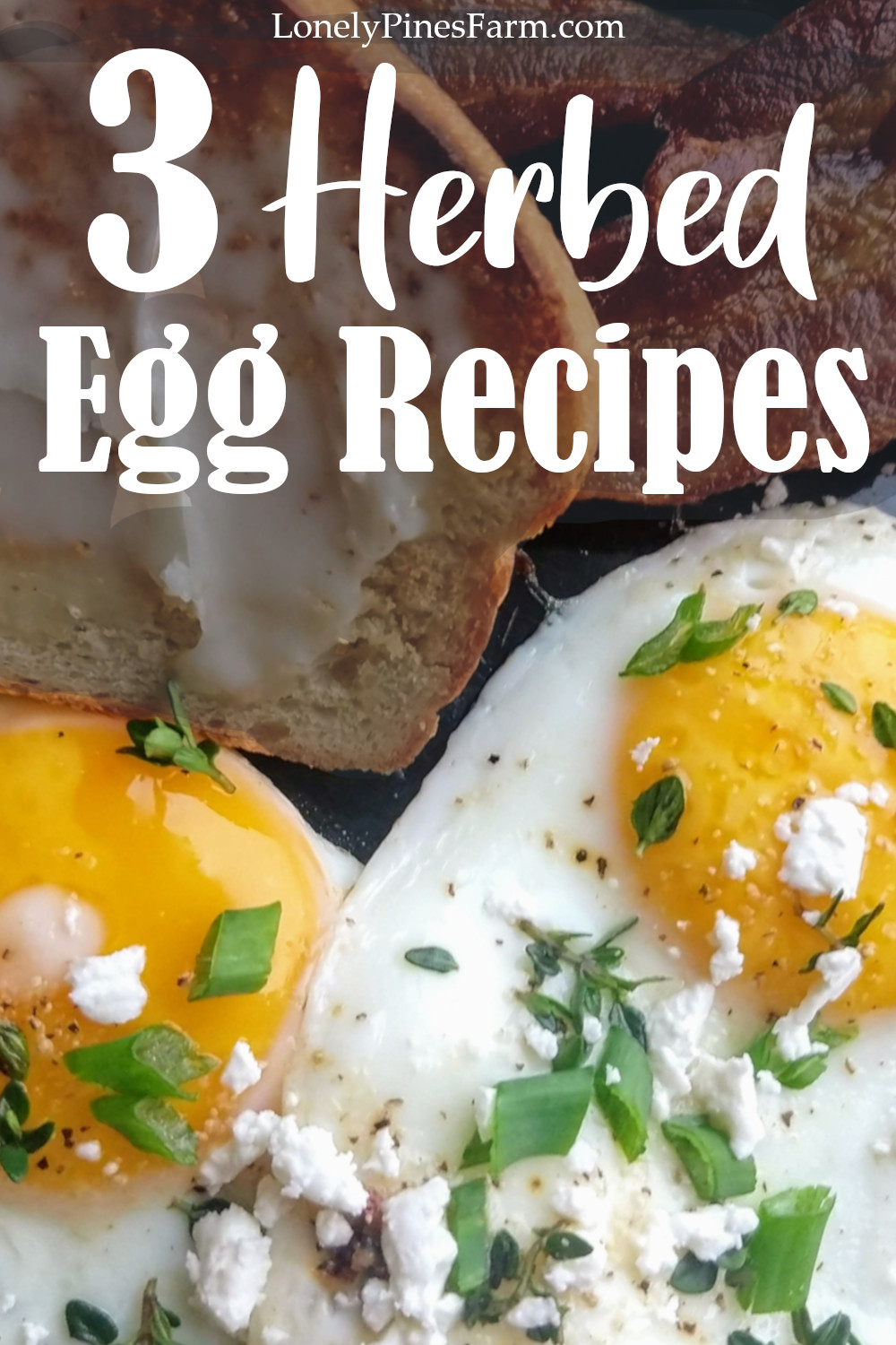 Boring breakfast? Time to spice it up! With these simple recipes & a few fresh herbs, you can add loads of flavor to your morning eggs. Wake up your taste buds & greet the day!