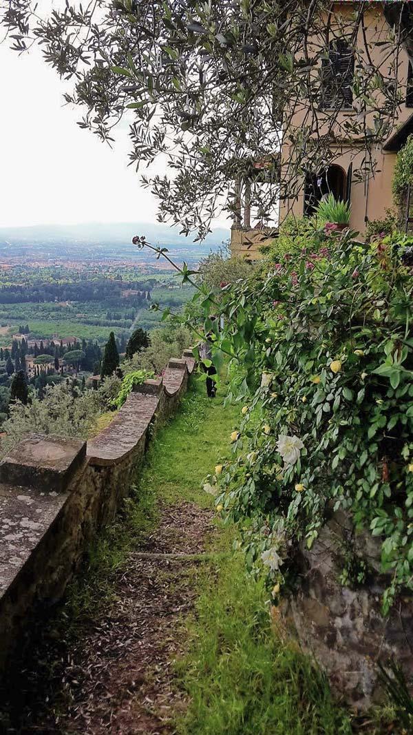 Fondazione Michelucci, il giardino di Villa il Roseto