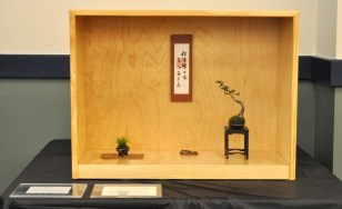 Honorable Mention 2-Shohin display with Chinese Elm-Hoe Chuah and Sooncheng Chuah-Houston Bonsai Society