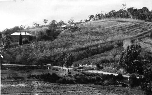 view of both houses on the land called Springvale, Gumeracha, early 1900s