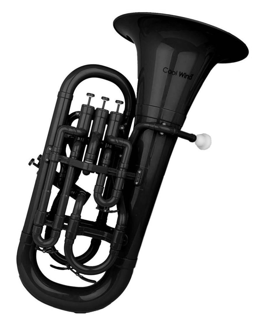 Cool Wind Plastic 3 Valve Euphonium Black Long