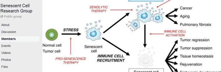 senescent cell facebook group