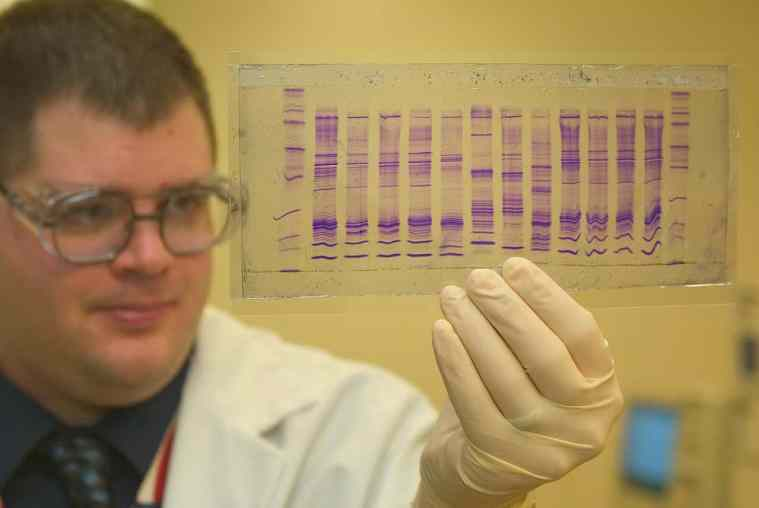 chemist reads DNA profile for genetic analysis