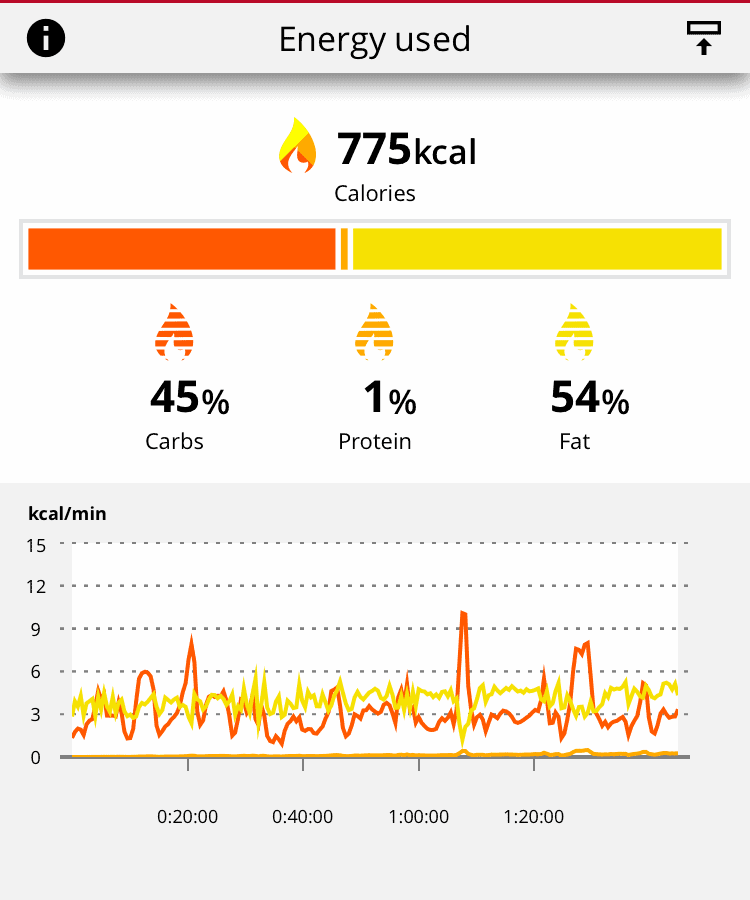 The top wearable Polar Vantage V2 calculating calorie expenditure.