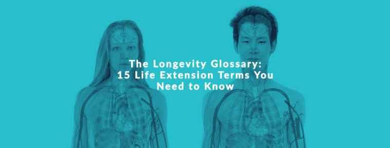 longevity glossary life extension terms