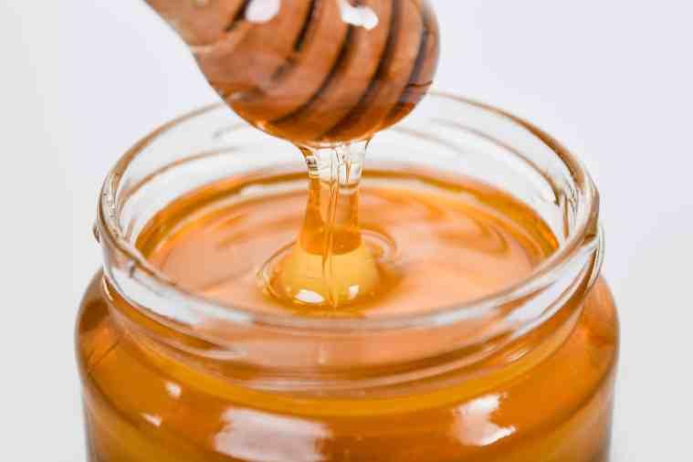paleo diet honey