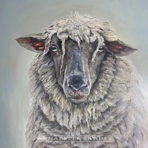 Bleat - sheep painting by Annabelle Sandes