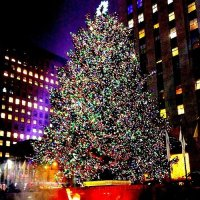 The 2015 Rockefeller Christmas Tree Lighting 2015: Kicking ...
