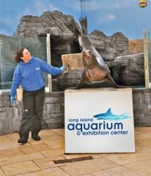 Today' Events - Long Island Aquariumlong Aquarium