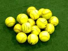 softball programs