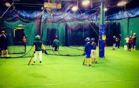 baseball hitting clinic
