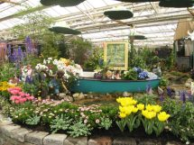 Hick Flower & Garden Show Offers Gateway Spring - Long
