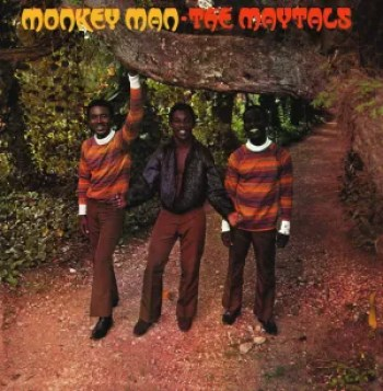 Monkey Man - The Metals