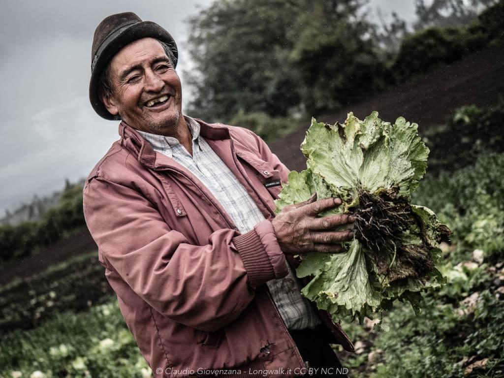 Un contadino che ci mostra l'insalata del suo campo.