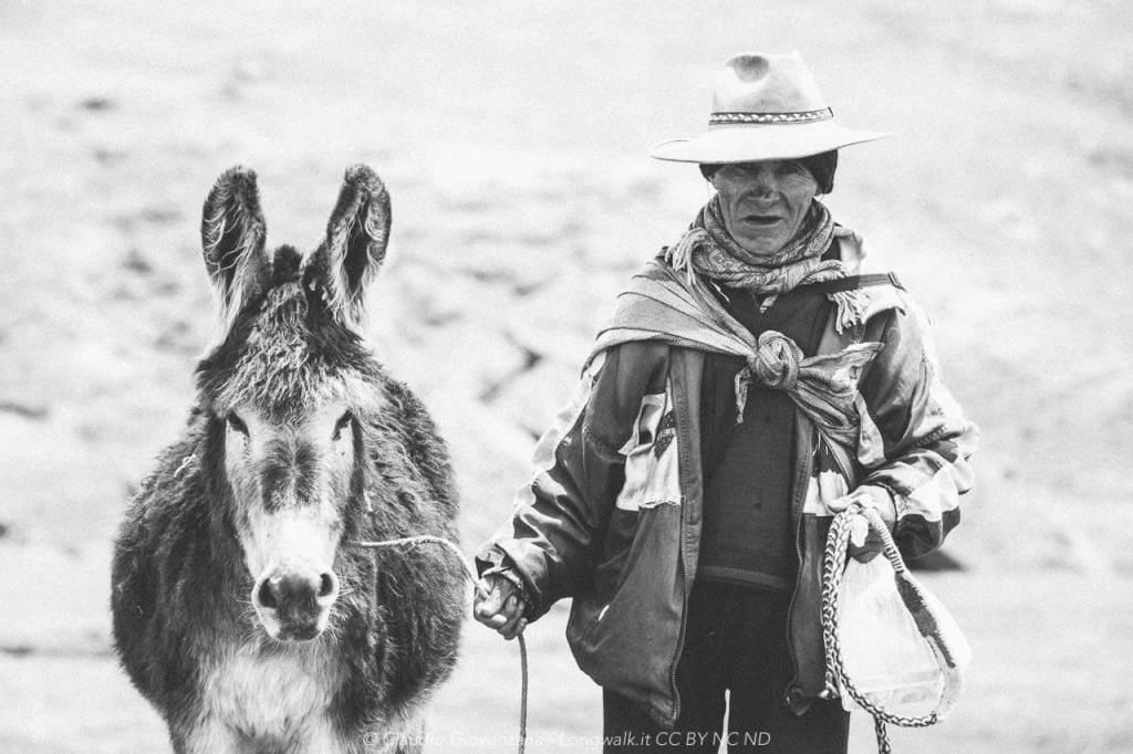Don Cirillo il pastore peruviano di lama