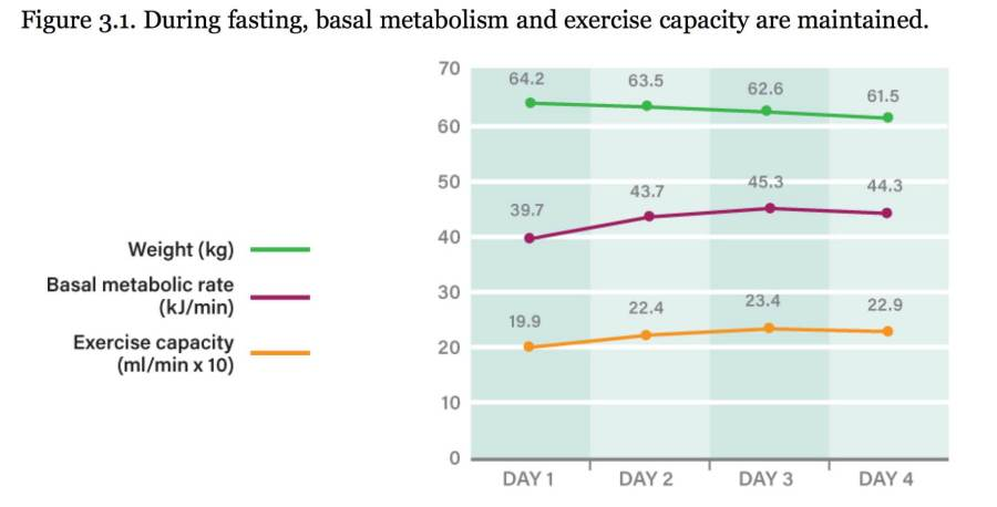 Metabolismo Basale durante Digiuno intermittente