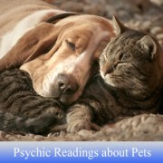 Psychic Readings about Pets - Blog post by Looking Beyond Master Psychic Readers. Call 1-800-500-4155 now!