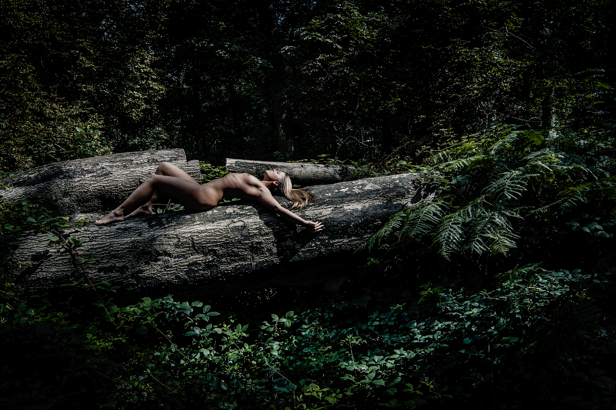 Photographing location nudes in woods