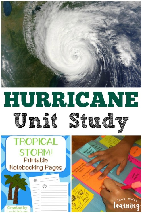 small resolution of learn about extreme summer weather with this hurricane unit study for kids
