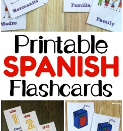 Printable Spanish Flashcards - Look! We're Learning! [ 1102 x 735 Pixel ]