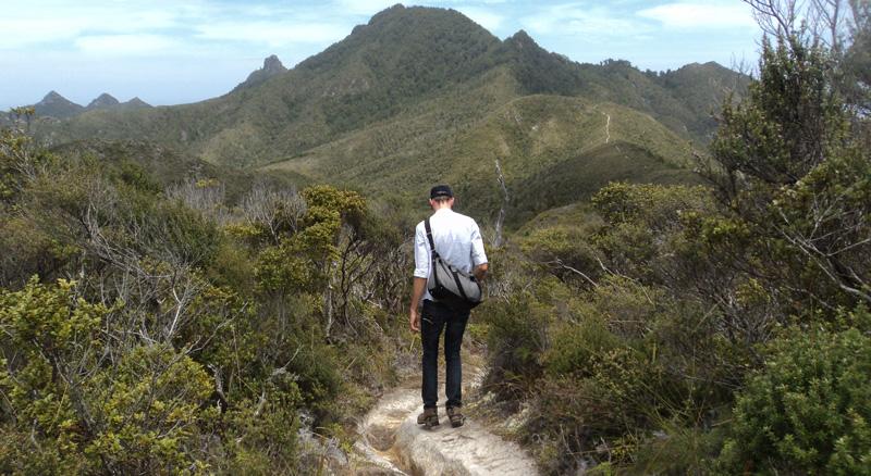 Great Barrier Island New Zealand