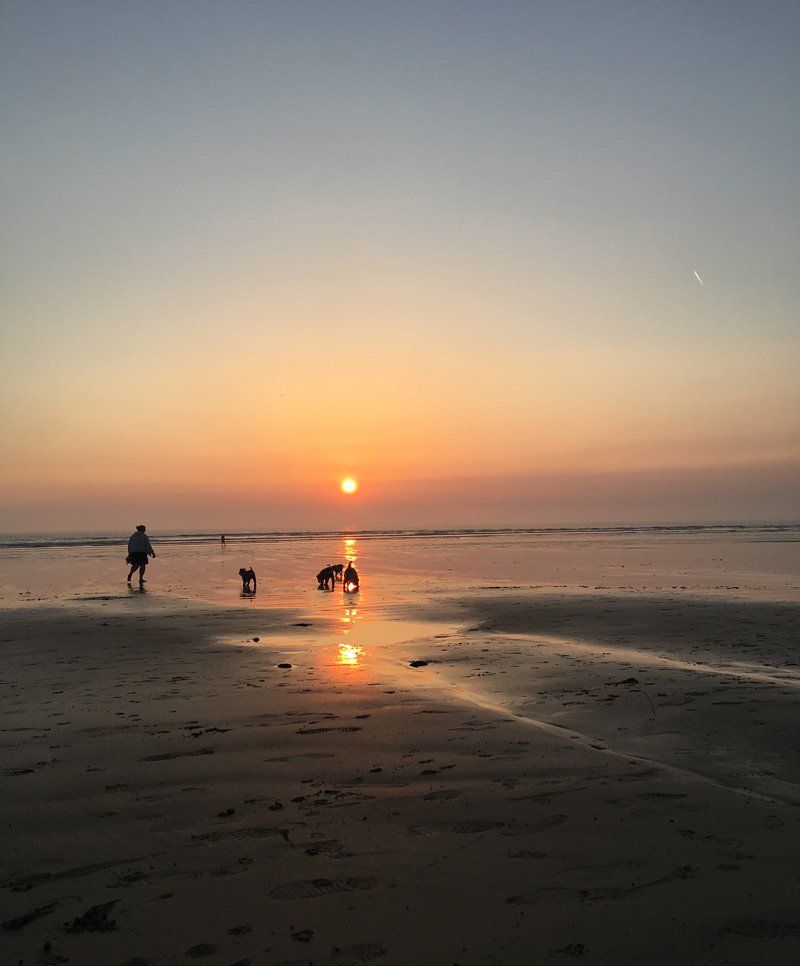 A summer in North Devon: my 10 favourite places