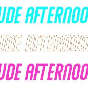 Dude Afternoon – Tee-Shirt  (Series #1)