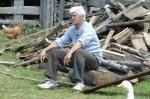 Die Alm 2011: Holzfällen ist für Rolf Scheider wie Kinder bekommen! - TV News