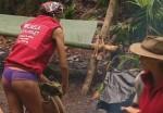 Dschungelcamp 2012: Micaela Schäfer fliegt raus! Ausgemopst im Dschungel! - TV