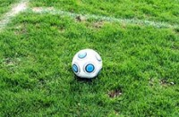 Ex-Bayern-Star Giovane Elber arbeitet während WM 2014 für ARD