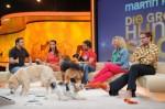 Paul Panzer trimmt Hund Timmy zum Socken ausziehen! - TV News