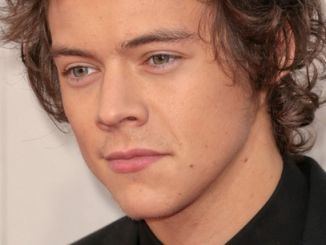 Harry Styles - 41st Annual American Music Awards - Arrivals