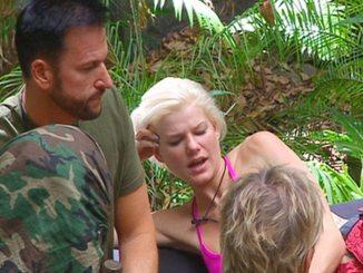 Dschungelcamp 2014: Michael Wendler, der Wendler oder Michael? - TV News