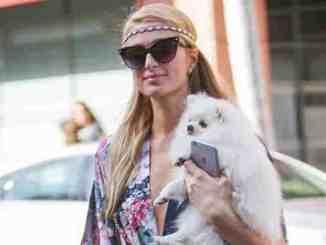 Paris Hilton: Familienplanung abgebrochen? - Promi Klatsch und Tratsch