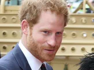 Prince Harry of Wales - 9th Annual Lord Mayor's Big Curry Lunch