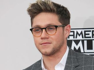 Niall Horan - 2016 American Music Awards