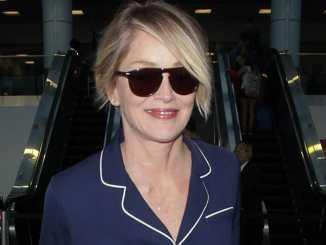 Sharon Stone ist nicht auf der Suche - Promi Klatsch und Tratsch
