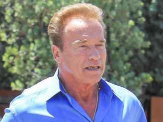 Arnold Schwarzenegger in Paradise - Promi Klatsch und Tratsch