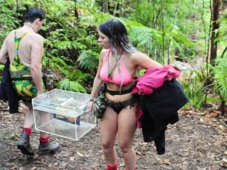 Matthias Mangiapane und Jenny Frankhauser: Limbo im Dschungel - TV News