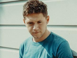 """Niall Horan: Seine Karriere ist wie """"Der seltsame Fall des Benjamin Button"""" - Musik"""