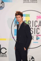 Ansel Elgort - 2017 American Music Awards - Press Room