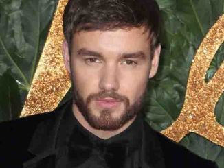 Liam Payne - The Fashion Awards 2018 in Partnership with Swarovski
