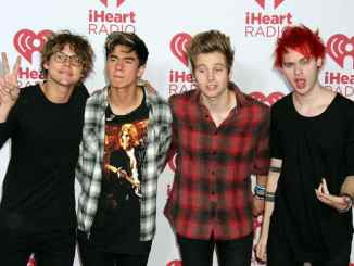 """5 Seconds of Summer"": Ashton Irwin verletzt Fan - Promi Klatsch und Tratsch"