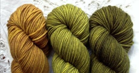 L-R Golden Praline, Envy, Zitouni