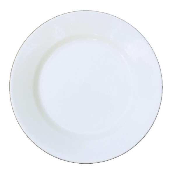 """Alchemy White Mediterranean Dish 11"""" (Box 12) (Direct)-0"""