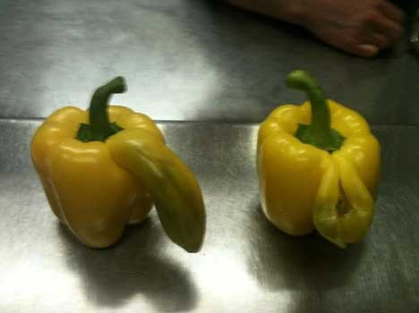 accidentally-sexual-fruits-vegetables-5319a718adecb_exlst