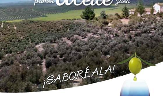 Viaje a Linares