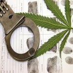 Guerra del narcotráfico