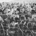Refugiad@s de guerra: genocidio en Europa